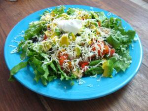 Easy Chicken Taco Salad Recipe