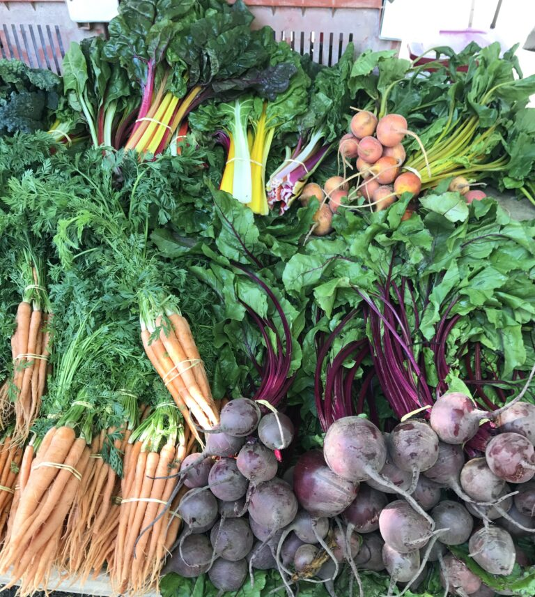 To Market, To Market – Farmer's Market