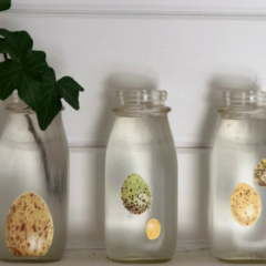 Milk Bottle Mod Podge – Another Simple DIY!