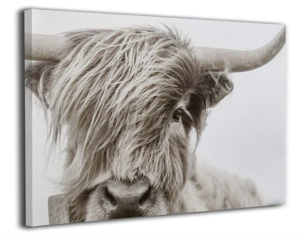 best neutral cow prints on amazon