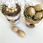 DIY Mini Flower Pots With Eggs