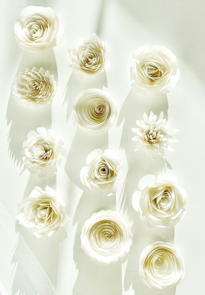 white rolled paper flowers made with a Cricut cutting machine