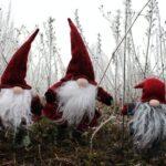 Christmas Gnomes Decorations