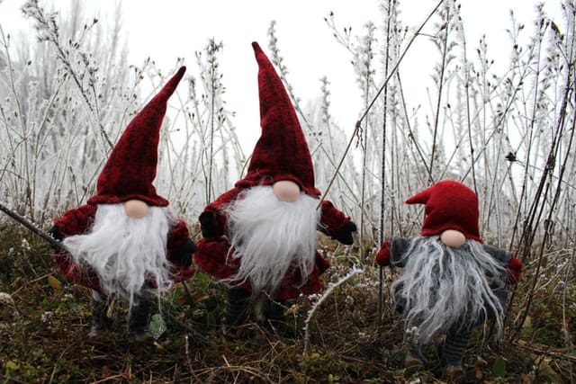 Best Christmas Gnomes Decorations